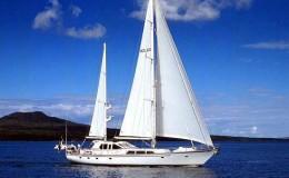 Sailing puerto vallarta yachts15