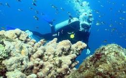 Scuba Dive at Las Caletas Puerto Vallarta Yachts2