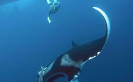Scuba Dive at Los Anegados Puerto Vallarta Yachts4