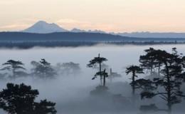 SanJuanIsland foggy Seattle Yacht Charters Daily