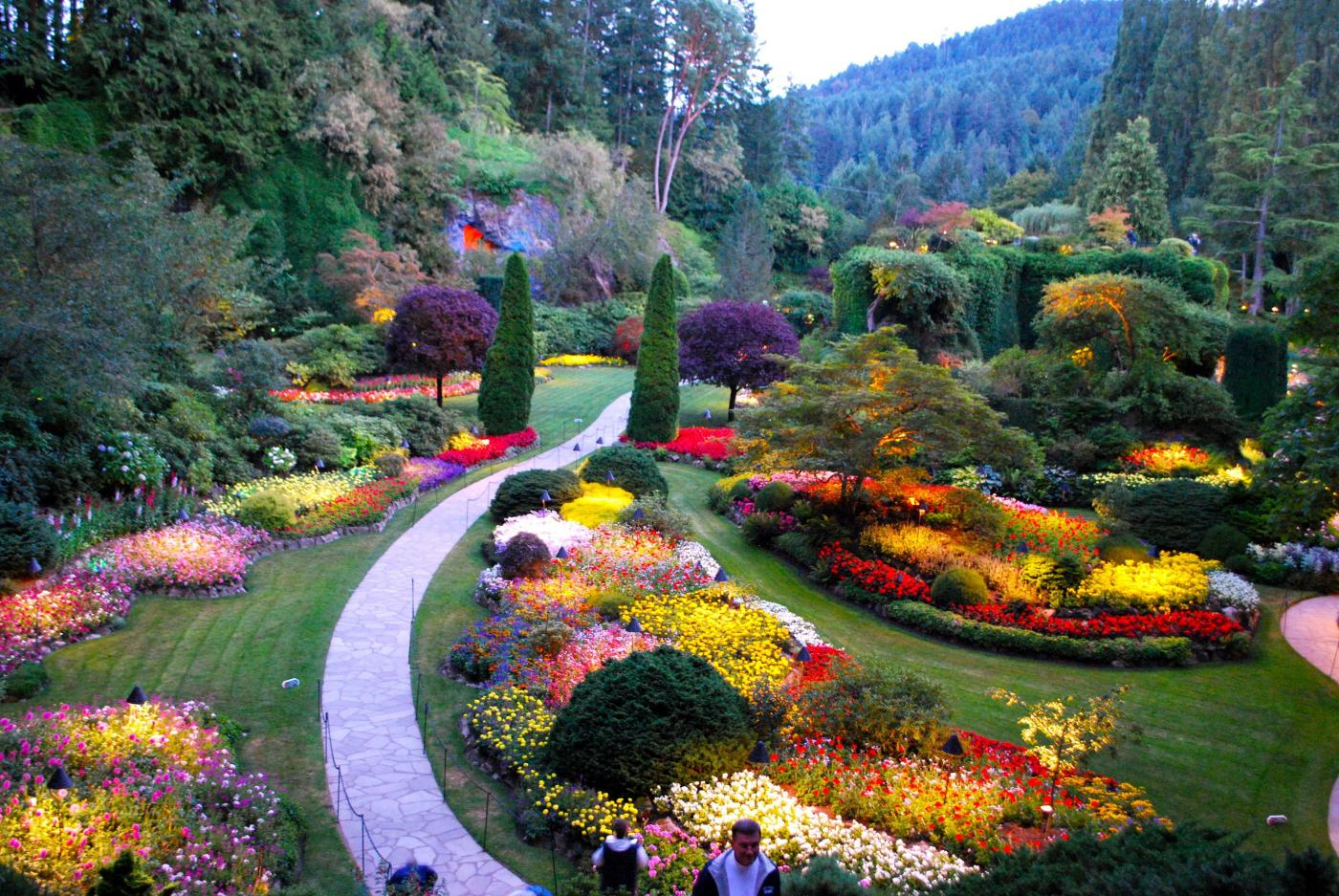 Yacht charter victoria bc victoria city yacht charters butchart gardens victoria bc nvjuhfo Images