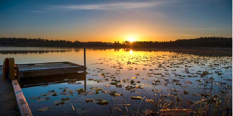 Hummel Lake Preserve