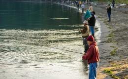 Fishing Bush Point
