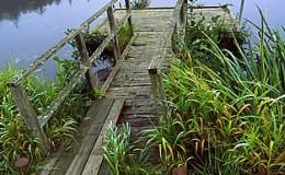 honeymoon lake whidbey island