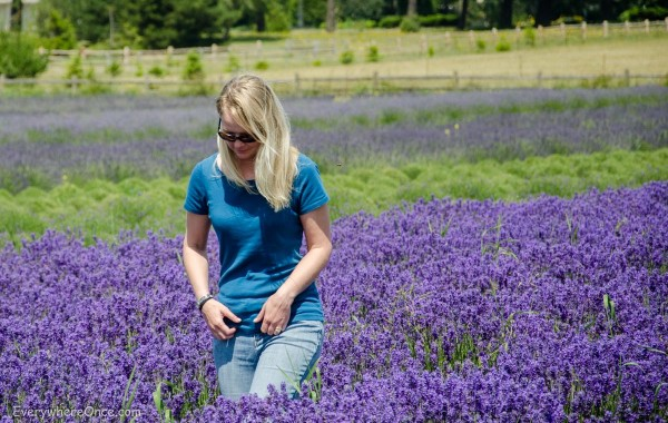 whidbey island lavender farm